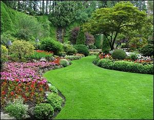 صورة ( إعلان ) جوائز وشهادات لأجمل حديقة في شقراء