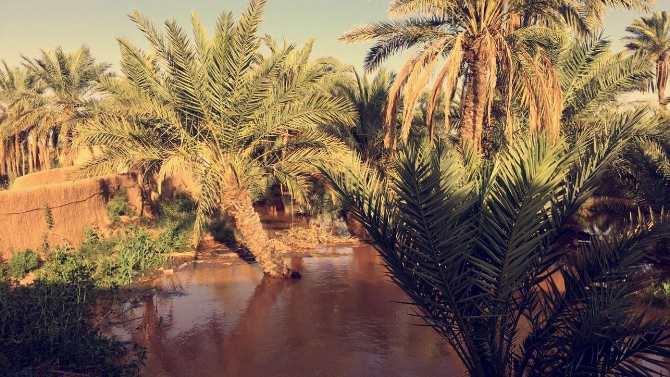 صورة فتح سد المنحنى بأشيقر 1436/6/15هـ