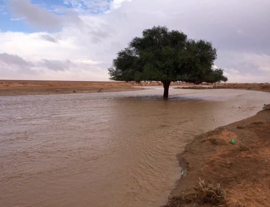صورة بالصور الأمطار تهطل على أشيقر وماجاورها