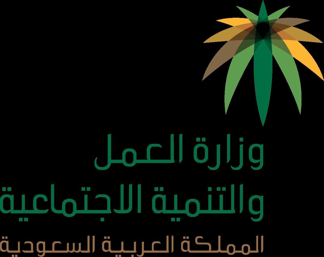 صورة وزارة العمل والتنمية الاجتماعية تطبيق قرار قصر العمل في منافذ تأجير السيارات على السعوديين