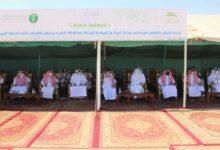 صورة تدشين حملة تشجير منتزه الرايغة البري بأشيقر (لنجعلها خضراء)